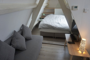Bekijk kamer te huur in Leiden Hoge Rijndijk, € 874, 15m2 - 367736. Geïnteresseerd? Bekijk dan deze kamer en laat een bericht achter!