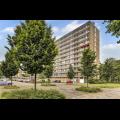 Bekijk kamer te huur in Utrecht Livingstonelaan, € 422, 10m2 - 296122. Geïnteresseerd? Bekijk dan deze kamer en laat een bericht achter!