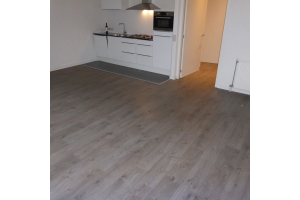 Bekijk appartement te huur in Tilburg Waterhoefstraat, € 700, 45m2 - 295419. Geïnteresseerd? Bekijk dan deze appartement en laat een bericht achter!