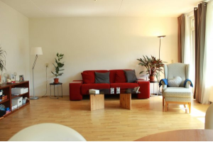View apartment for rent in Rijswijk Zh Steenvoordelaan, € 980, 85m2 - 304200. Interested? check out this apartment and leave a message!
