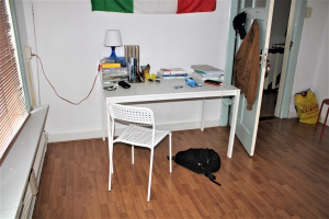 Te huur: Kamer Hoflaan, Arnhem - 1