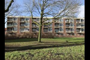 Bekijk appartement te huur in Lisse Van Speykstraat: Appartement - € 95, 50m2 - 293663
