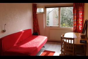 Bekijk kamer te huur in Arnhem Lieshoutstraat: Kamer te huur - € 210, 30m2 - 295725