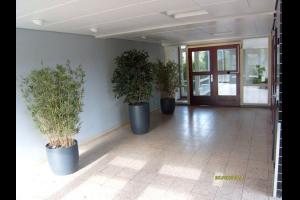 Bekijk appartement te huur in Leiden Apollolaan, € 900, 85m2 - 284698. Geïnteresseerd? Bekijk dan deze appartement en laat een bericht achter!