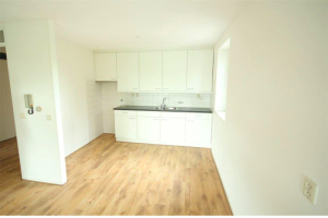 Te huur: Appartement Finnenburg, Den Haag - 1