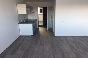 For rent: Apartment Nieuwe Duinweg, Den Haag - 1