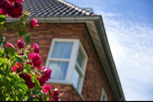 Bekijk woning te huur in Eindhoven Pianostraat: Volledige nieuwe tweekapper  - € 1500, 320m2 - 290510