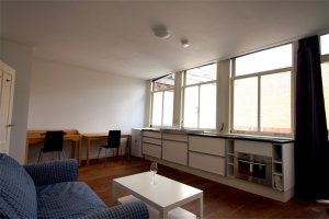 View studio for rent in Leiden Haven, € 745, 28m2 - 396073. Interested? check out this studio and leave a message!