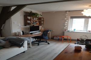 For rent: Room Zwanenstraat, Arnhem - 1